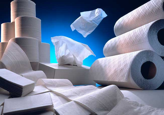 Tissue and Hygiene Paper, Paper Industry